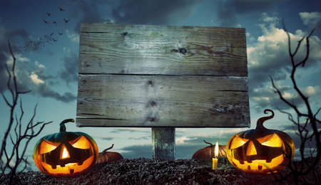 Halloween Night Concept. Space for your Halloween holiday text. Zdjęcie Seryjne