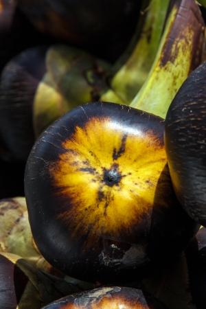 cambodian palm: La stretta di Asian Palmyra palma, Toddy palma, zucchero di palma o cambogiano palma