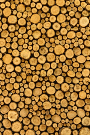 Big wall background made from log wood photo