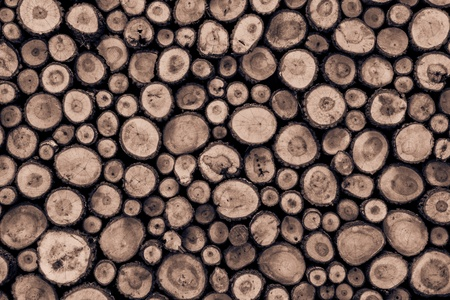 wall background made from log wood Standard-Bild
