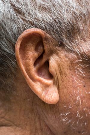 aging brain: Ear elderly Stock Photo