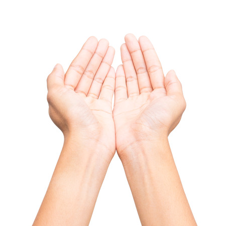 Human open empty hands on white background.