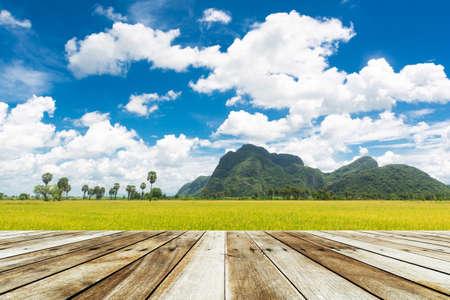 wood floor: wood floor on blue sky and field rice
