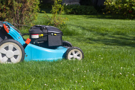 mower on the mown grass in the yard photo