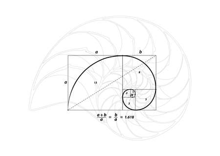proportion: Golden section (ratio, divine proportion) and golden spiral on black and Shell line