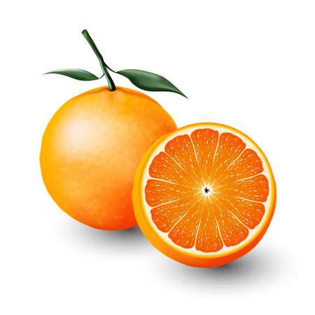 Orange and a half of orange, fruit, transparent
