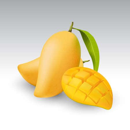 フレッシュ マンゴーとマンゴーの半分果実、透明、ベクトル  イラスト・ベクター素材
