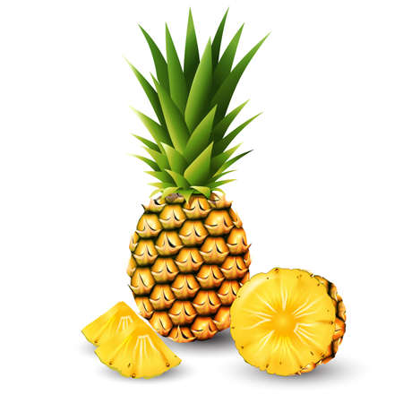 Pineapple and a half of pineapple, fruit, transparent, Vector, transparent