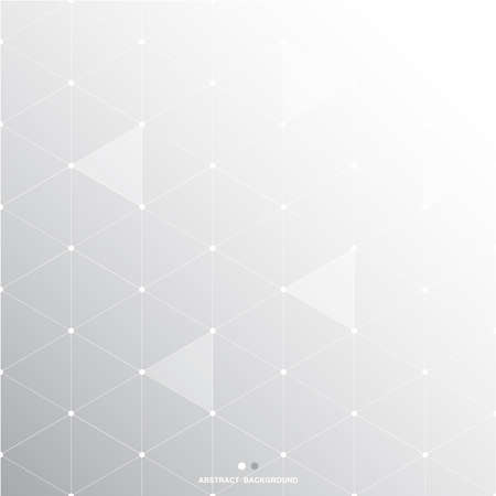 Abstract black white gray Polygon Background, vector illustration