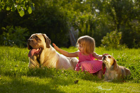 Girl with little and large dogs in the garden