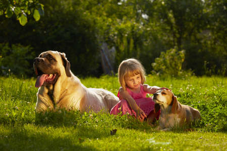 Girl with little and large dogs in the garden photo