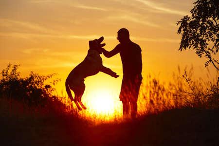 obediencia: Hombre joven con su perro labrador de color amarillo en la naturaleza - y retroiluminación