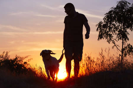 perro corriendo: Hombre joven con su perro labrador de color amarillo en la naturaleza - y retroiluminación
