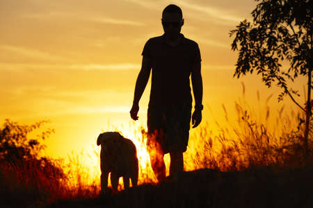 man dog: Young man with his yellow labrador retriever in nature - back lit