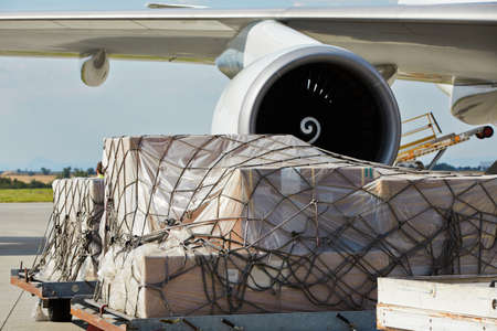 loading cargo: Loading of cargo to the freight aircraft  Stock Photo