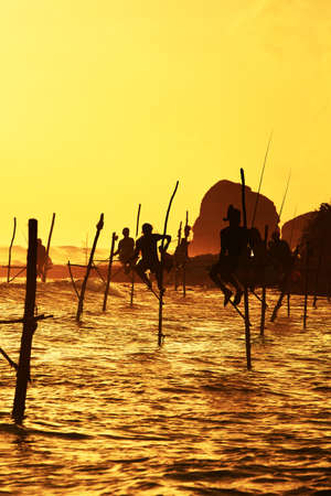 indian subcontinent ethnicity: Silhouettes of the traditional fishermen at the sunset near Galle in Sri Lanka    Stock Photo