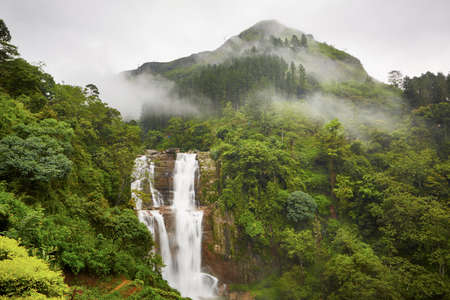 Waterfall in deep forest near Nuwara Eliya in Sri Lanka   photo