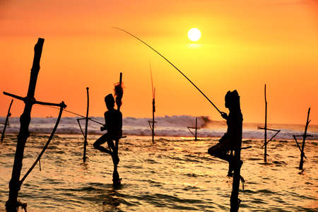 stilts: Silhouettes of the traditional fishermen at the sunset in Sri Lanka.