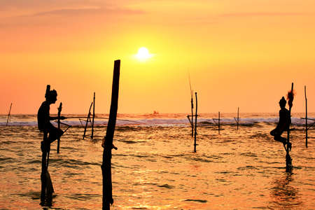 fishman: Silhouettes of the traditional fishermen at the sunset in Sri Lanka.