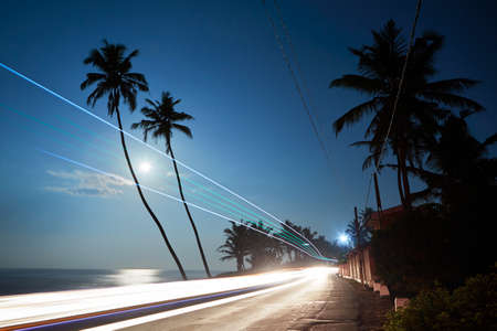 palm trees silhouette: Night photo with full moon above sea in Sri Lanka.