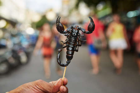 market vendor: Hand of vendor with roasted scorpion. Street in Bangkok, Thailand. Stock Photo
