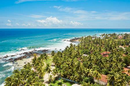 Palm trees on the tropical beach, Sri Lanka  photo