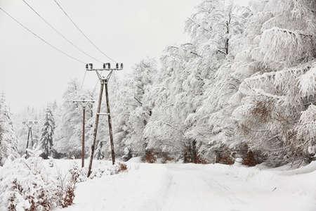 torres el�ctricas: La nieve cubr�a los postes de electricidad en el paisaje invernal