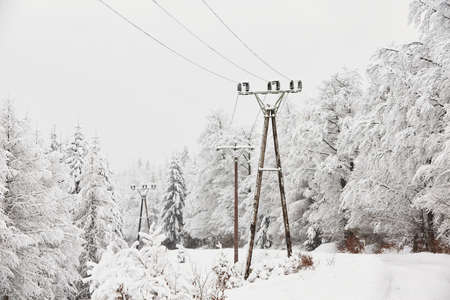 outdoor electricity: Snow covered electricity pylons in wintry landscape Stock Photo