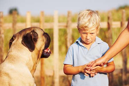 chien: Gar�on timide tient de la m�re sur le jardin.