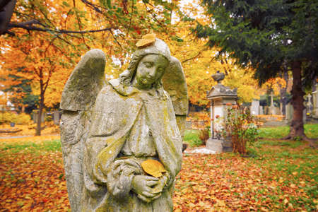 fatality: Sad angel statue at old cemetery in autumn
