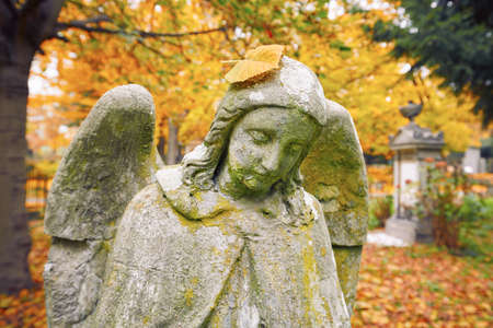 angel cemetery: Sad angel statue at old cemetery in autumn