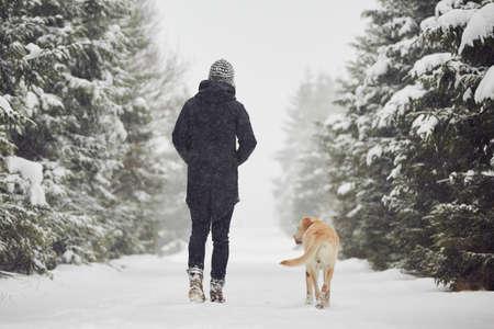 ropa de invierno: Hombre que recorre con su labrador retriever amarillo en el paisaje de invierno