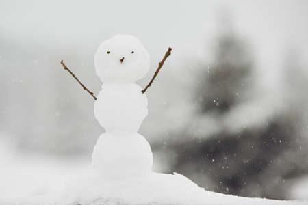 cold day: Winter time - snowman in nature in cold day