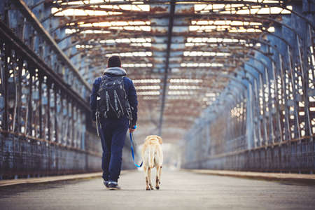 labrador: Man walking with his yellow labrador retriever on the old bridge Stock Photo