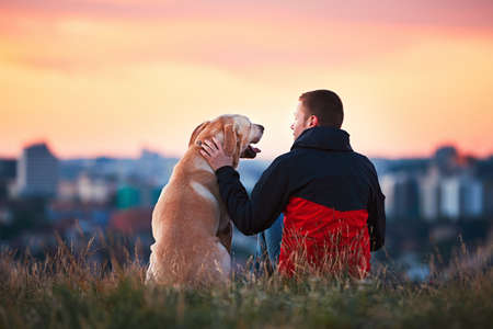 Enjoying sun. Man is caressing yellow labrador retriever. Young man sitting on the hill with his dog. Amazing sunrise in the city. Prague in Czech Republic.