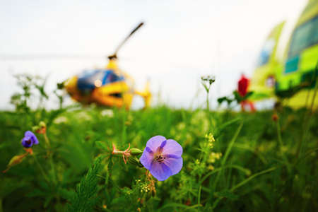 rescue service: Air ambulance is landing on the meadow. Cooperation air rescue service with emergency medical service on the ground. - selectiv focus on the flower