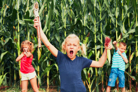 unruly: Mischievous girls and boy. Little girl is playing with her siblings in corn field.