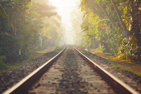 railroad track: Foggy morning in Sri Lanka. Railroad track through the jungle and villages. Stock Photo