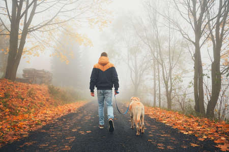 Rural road in mysterious fog. Man with dog on the trip in autumn nature.  Stock Photo