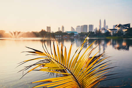 Beautiful morning in public park in Kuala Lumpur. Skyline of the modern city at sunrise. Selective focus on the palm leaf. Stock Photo