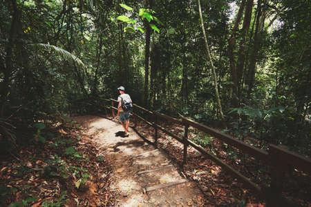 -マレーシア、ボルネオ島の熱帯雨林に足を踏み入れた若い男