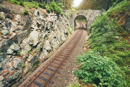 잊혀진 다리. 철도 위에 오래 된 돌 다리 포리스트의 중간에 추적합니다. Ore Mountains, 체코