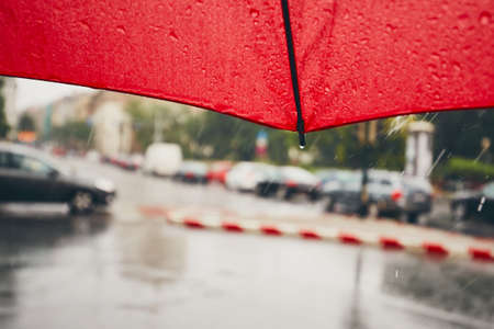 Gloomy day in the city. Traffic in heavy rain. Selective focus on the umbrella. Reklamní fotografie