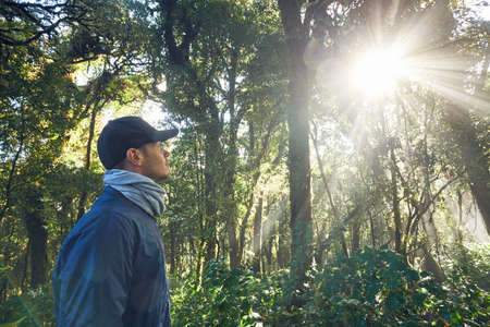 Hike during sunrise. Young man (traveler) walking in tropical rainforest in Thailand mountains.