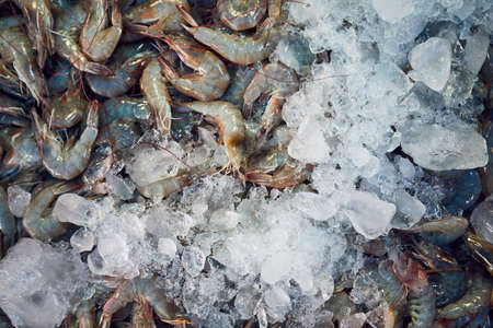 Closeup of a lot of fresh shrimps with ice on the street market. Bangkok, Thailand 스톡 콘텐츠