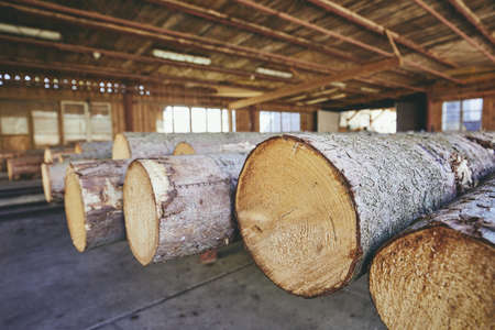 Lumber industry. Stack of the timber at the sawmill. Stock fotó - 100857726