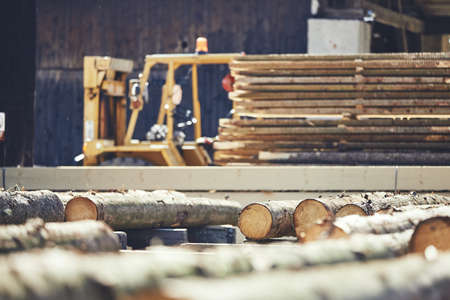 Lumber industry. Stack of the timber at the sawmill. Zdjęcie Seryjne