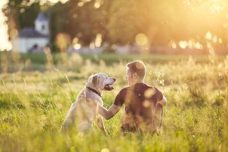 Rear view of young man with dog (labrador retriver) in nature at sunset. Фото со стока