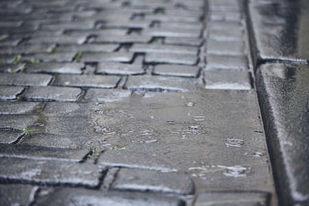 Puddle on road in rain. Full frame shot of cobblestone street. Stockfoto - 104426040