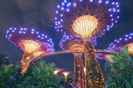 Singapore - September 8, 2018: Night light show of Supertree Grove at Gardens by the Bay in Singapore on September 8, 2018. Archivio Fotografico - 113344699